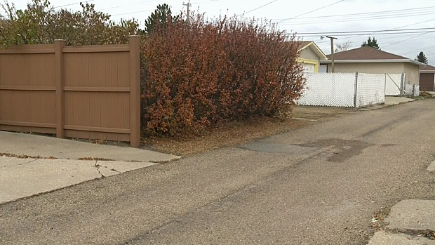 An alley in north east Edmonton where a human head was found in a box Wednesday morning.