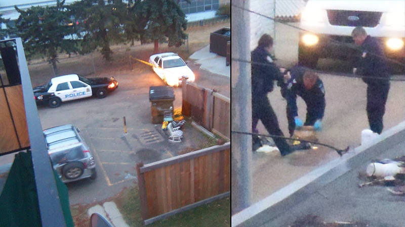 Police at the scene of an alley in north east Edmonton where a human head was discovered in a box on Oct. 24, 2012. (Jesse Whitnack for CTV News)