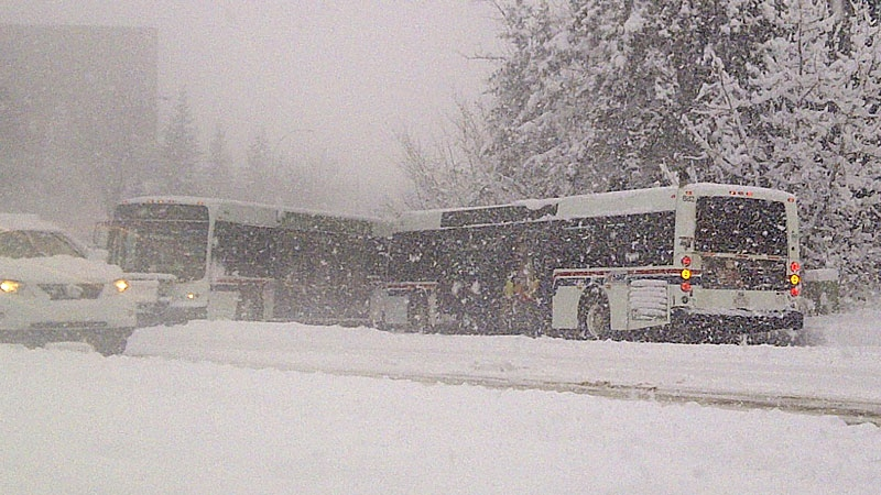 "St. Albert Transit buses collide in front of St. Albert City Hall. The snow has forced the City of St. Albert to suspend its local transit service Wednesday ""due to unsafe and impassible road conditions."""