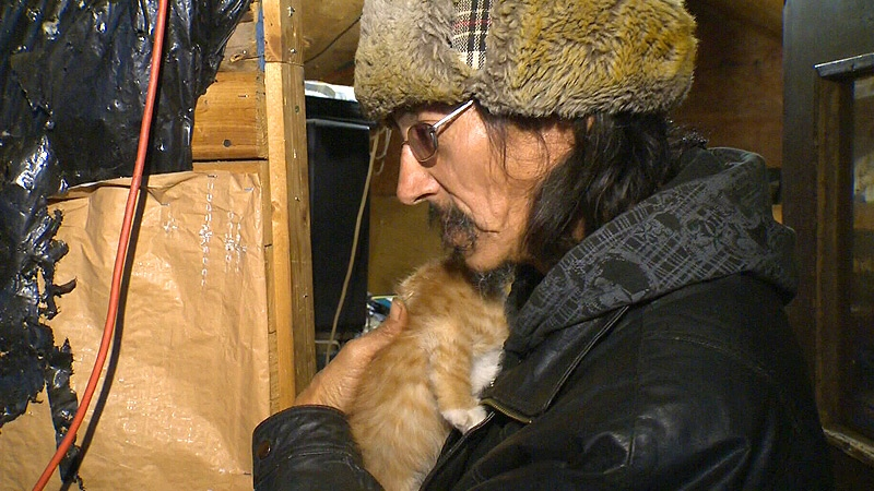 Dan Lapotac would like to find homes for the nearly 50 cats and eight dogs that call his makeshift tent on the Enoch Cree Nation home.