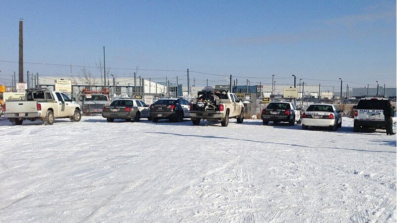 A number of police and wildlife control officers were on the scene, as they tried to wrangle a bull on the loose in northeast Edmonton on Wednesday, Feb. 20.