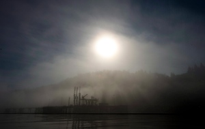 Kinder Morgan oil facility is silhouetted by the sun as it tries to burn through a morning fog in Burrard Inlet in Burnaby, B.C. Wednesday, Oct. 16, 2013. (THE CANADIAN PRESS/Jonathan Hayward)