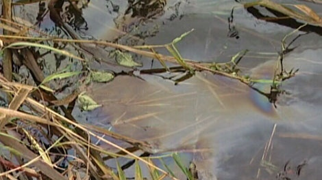 Up to one thousand litres of heating oil has spilled on Vancouver Island because of a damaged pipe. Nov. 26, 2011. (CTV)