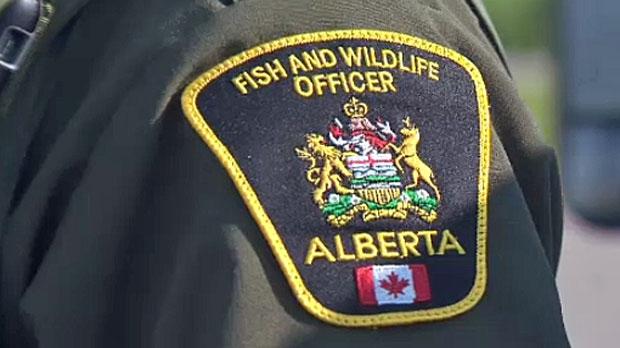 Alberta Fish and Wildlife