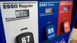 The gas price for regular was 59.9 cents a litre at an Edmonton gas station on Tuesday, February 9.