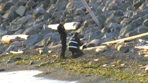 Investigators examine a foot found on Botanical Beach in B.C. on Feb. 7, 2016.