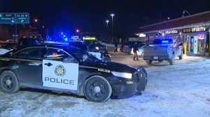 Police arrested a man at a northwest liquor store just after midnight in the latest stolen vehicle case in Calgary.