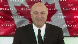 Kevin O'Leary speaks to Evan Solomon on CTV's Question Period.