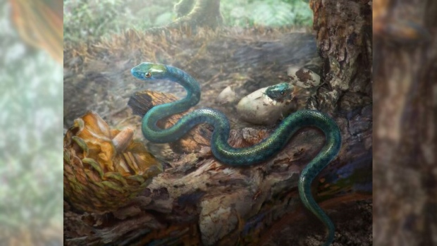 rendering of ancient snake