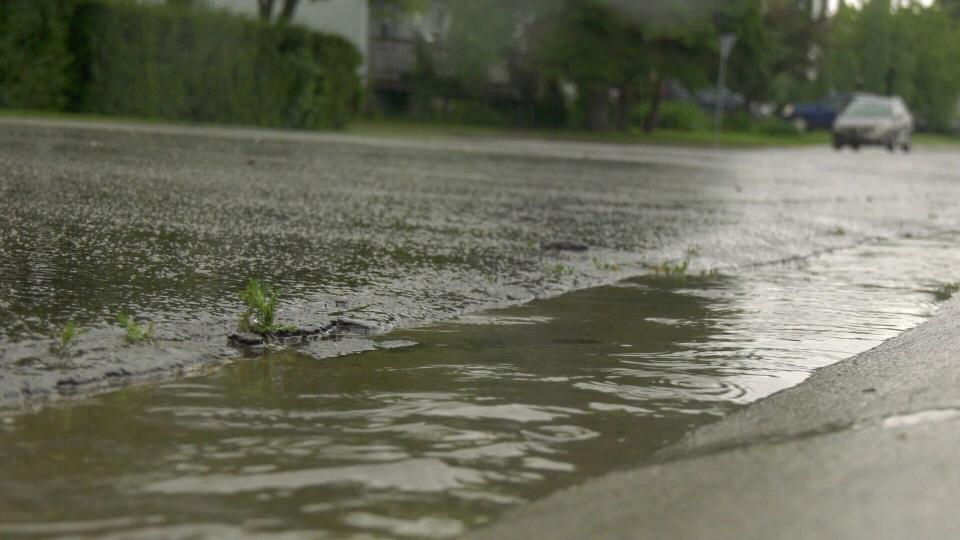 Rain Edmonton