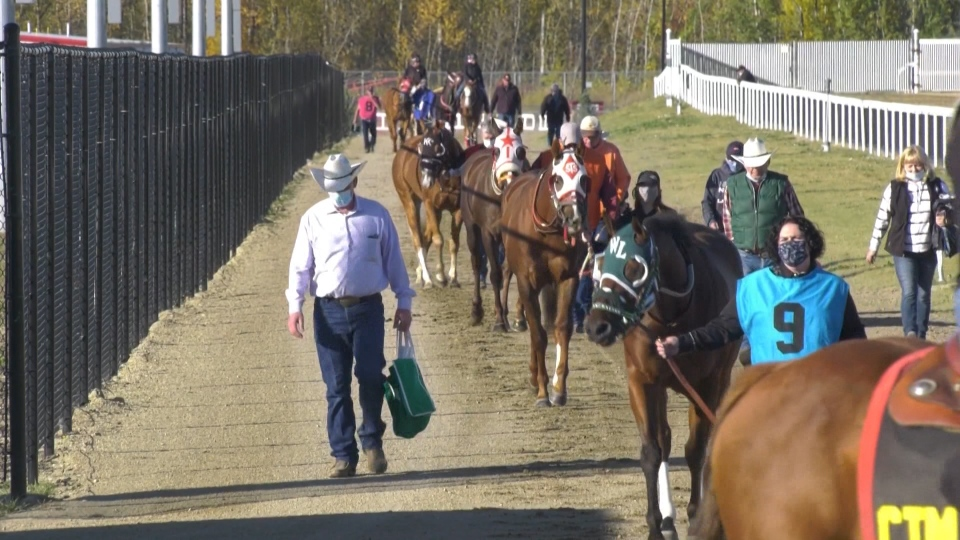Canadian Derby