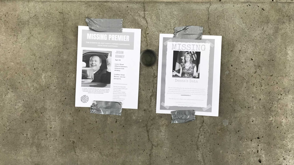 missing Kenney, Hinshaw posters