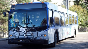 An Edmonton Transit bus is pictured in a supplied photo from the City of Edmonton website.