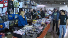 Hundreds packed the Alberta Aviation Museum on Sunday for the Edmonton Pop Culture Fair.